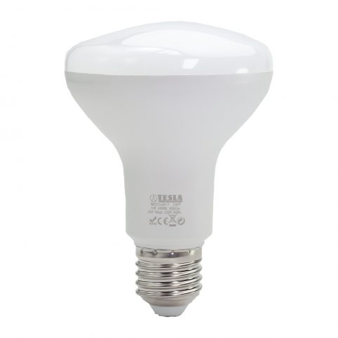R8271140 bulb only